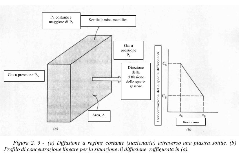Carbonio datazione rationalwiki